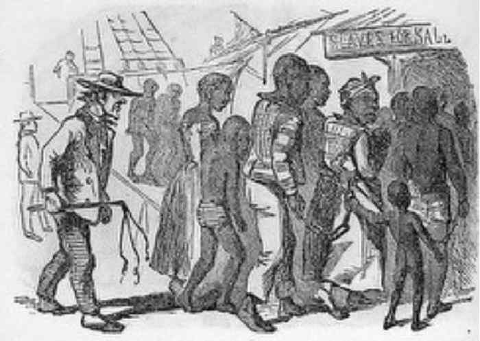 insights on the domestic slave trade essay